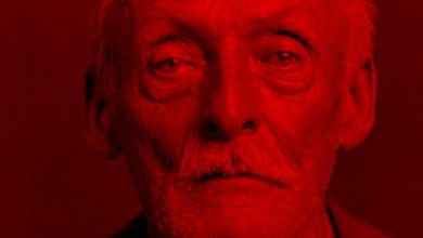 Bild von Albert Fish – The Brooklyn Vampire – The Grey Man