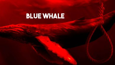 Photo of Blue Whale Challenge – In 50 Tagen zum Tod?